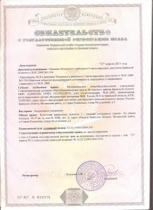 свидетельство о государственной регистрации права 3